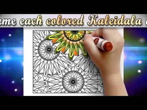 Kaleidala Adult Coloring Book Kaleidoscope Mandala Patterns V1