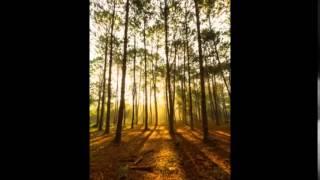 Musica de adoracion, musica cristiana instrumental, musica para orar
