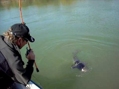 Avis Canne télescopique pêche au coup S'CAPE TELESCO 700 Caperlan