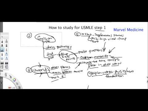 How to study for USMLE step 1