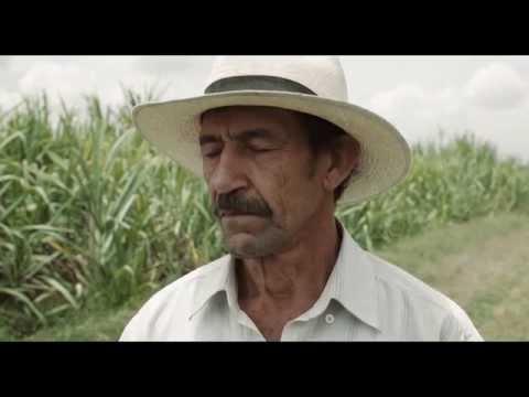 Trailer do filme A Terra e a Sombra