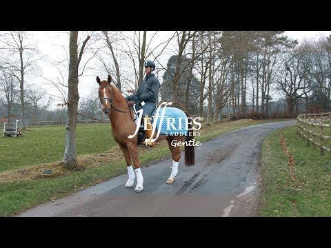 Jeffries Saddlery - Gentle Bridle Product Launch