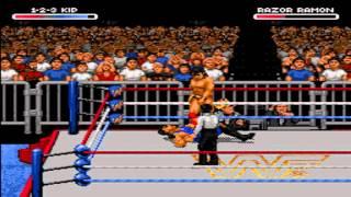 WWF RAW One-on-One