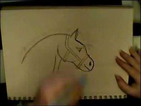 How to draw a cartoon horse... - YouTube