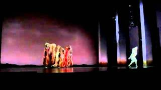 SHADOW LAND Lion King Sinagpore.AVI
