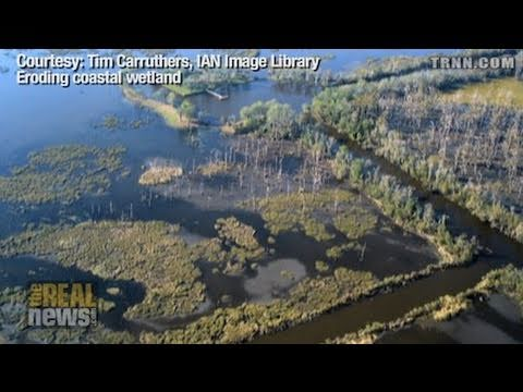 BP Spill Destroys a Way of Life