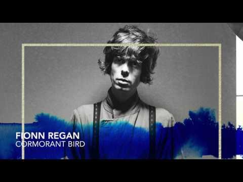 Fionn Regan - Cormorant Bird