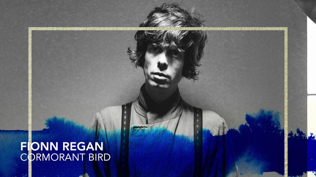 fionn-regan-cormorant-bird-hd360-official