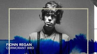 Play Cormorant Bird