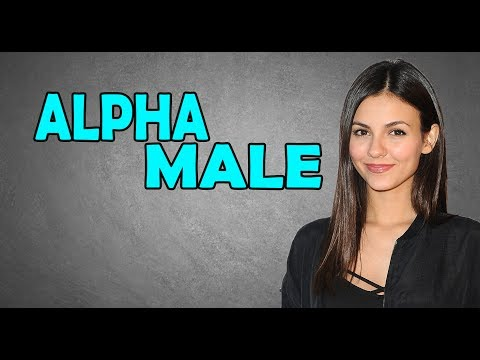 beta male dating alpha female