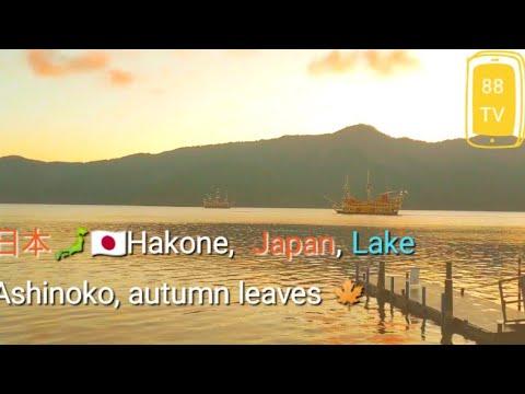 日本🗾🇯🇵紅葉 Hakone, a famous tourist destination in Japan,  Lake Ashinoko autumn leaves 🍁芦ノ湖  夕日