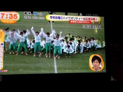 めざましテレビ 墨田川高校 応援合戦