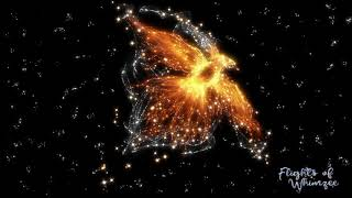 Phoenix Rising ~ Transformative Hypnosis Journey ~ Rise Reborn