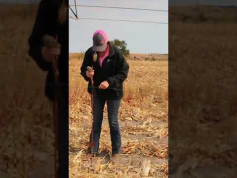 Farmer, Farmer dance, Nebraska,