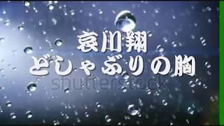 哀川翔 - どしゃぶりの胸