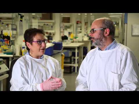 The nanoscientist and the sociologist
