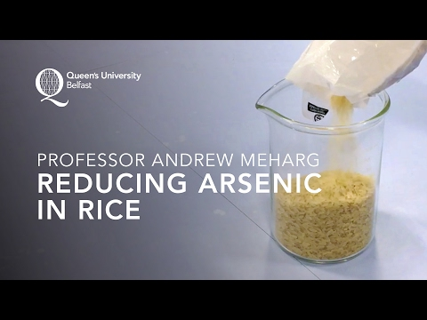 Professor Andrew Meharg – Reducing Arsenic in Rice