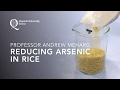 Professor Andrew Meharg – Reducing Arsenic in Rice