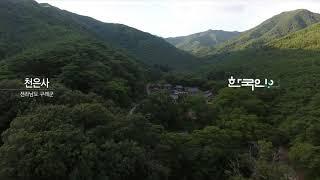 [KBS 9시 뉴스 아이디] 천은사 2020-08-04