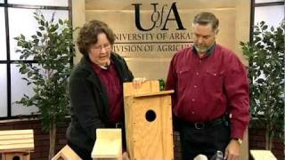 Building Bluebird Nest Boxes
