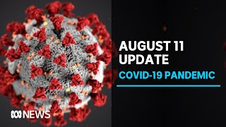 Coronavirus update Aug. 11: Vic. records 331 new cases, 19 more deaths & NSW 22 new cases | ABC News