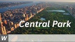 Facts about Central Park | Englisch-Video für den Unterricht