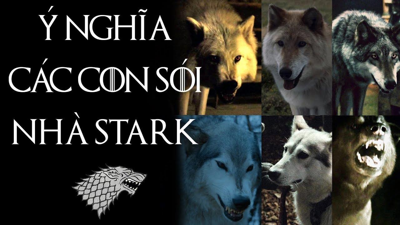 Game of Thrones – SÓI NHÀ STARK VÀ CHỦ NHÂN CHÚNG LIÊN QUAN THẾ NÀO?