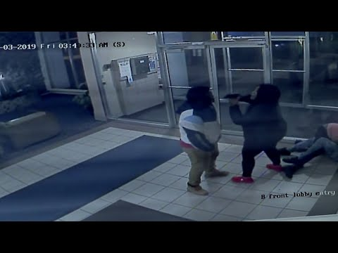 Euclid fight and