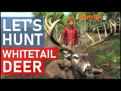 theHunter Hunting Game - Let's Hunt WHITETAIL DEER
