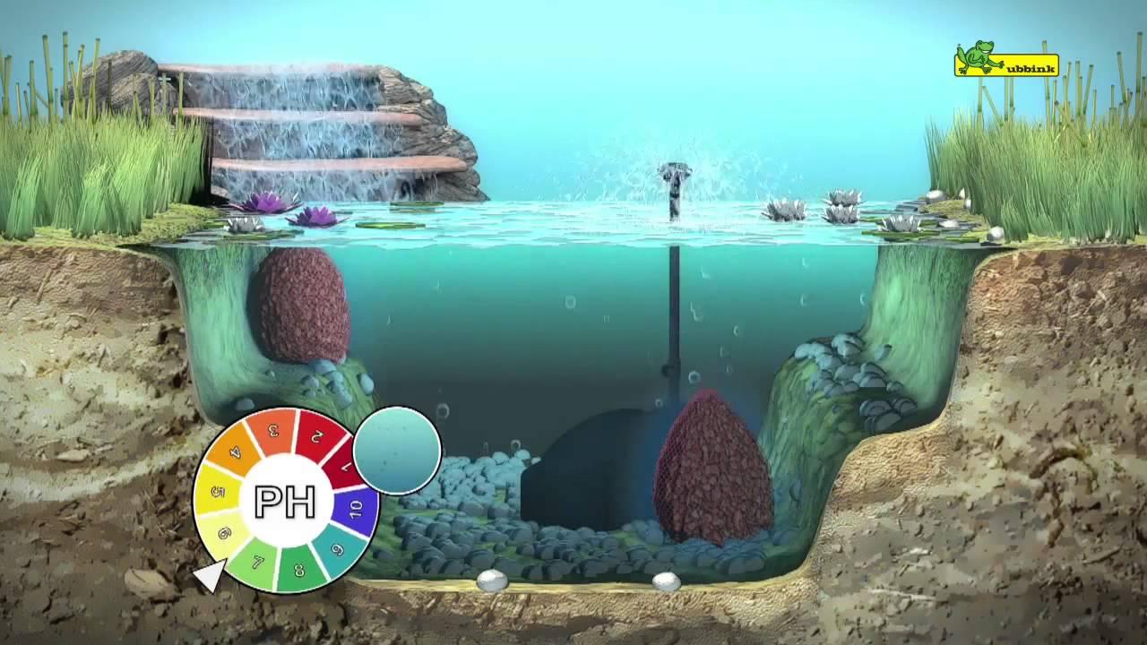 Pr sentation produit tourbe aquavital bassin de jardin youtube for Bassin de jardin algues vertes