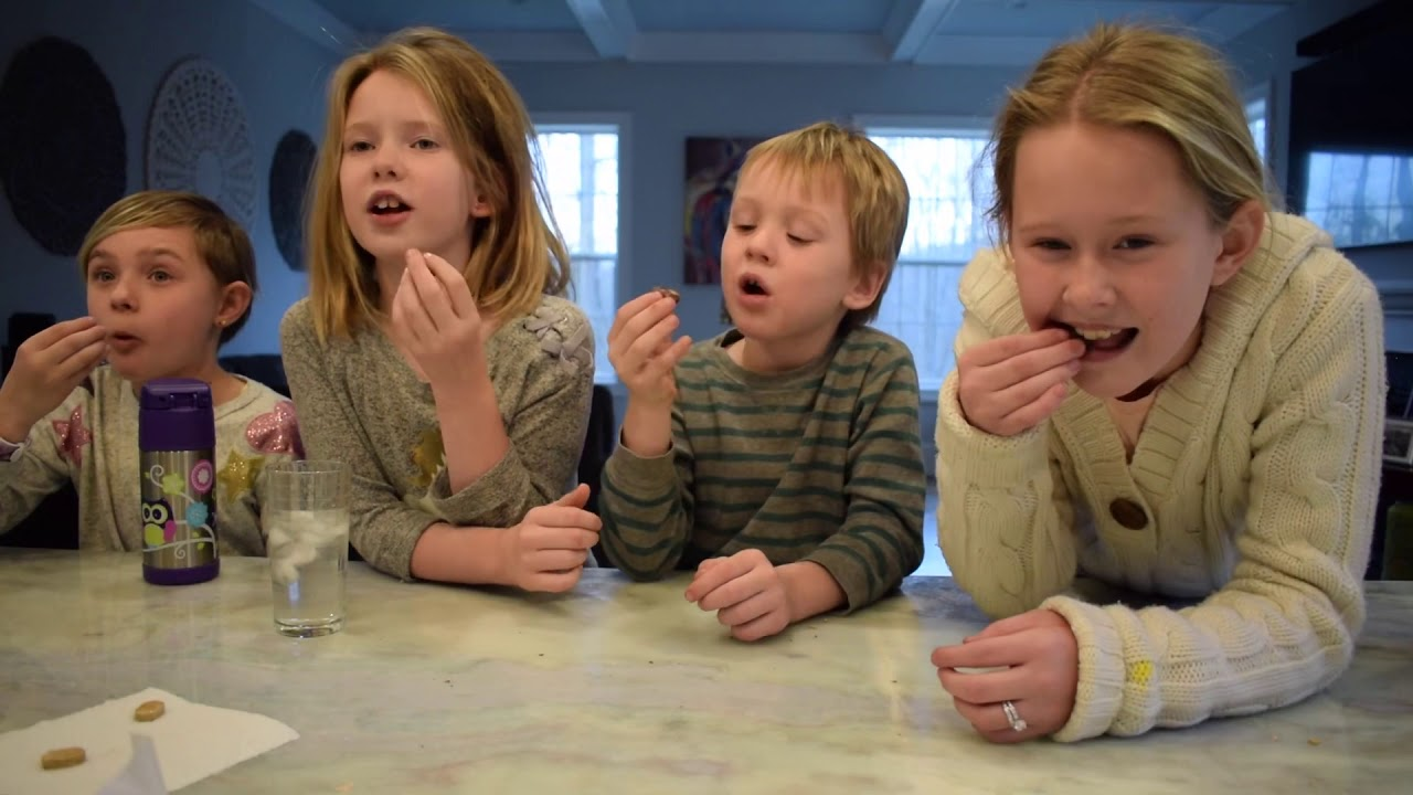 MY AMERICAN HOSTKIDS TRY DUTCH CANDY | au pair