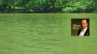 美しく青きドナウ ~ ヨハン・シュトラウスⅡ世 / アーノンクール, RCO