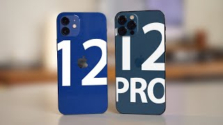 iPhone 12 vs iPhone 12 Pro - Which Should You Buy?