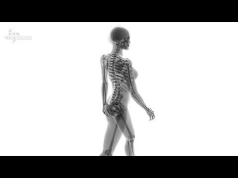 1964 16mm X Ray Film public domain footage creepy from YouTube · Duration:  13 minutes 24 seconds