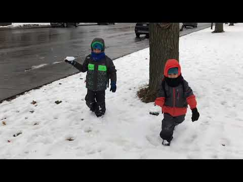 Snow Falls In Montreal Canada 20 November 2019