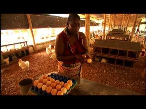 Africa's Women Farmers