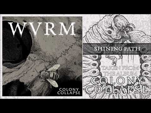 WVRM - SHINING PATH (OFFICIAL AUDIO)