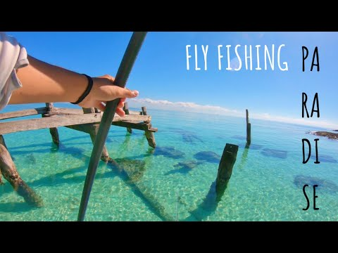 PARADISE IN MEXICO! (FLY FISHING SALTWATER) Caribbean Ocean, Riviera Maya..