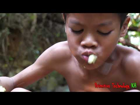 Primitive Technology - Eating delicious - Smart boy cooking chinken wing