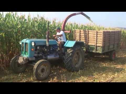 Siliranje Kukuruza Pored Reke Pepeljuse(Smrduse) 2013