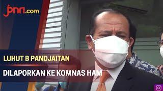 Dilaporkan ke Komnas HAM Begini Respon Kuasa Hukum Luhut Binsar Pandjaitan - JPNN.com