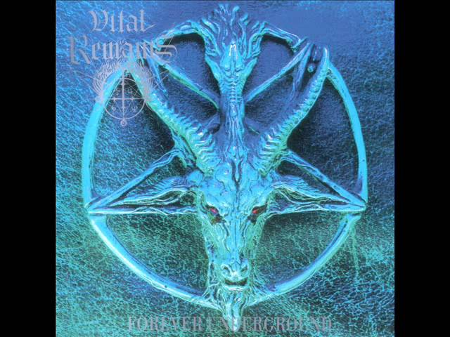 Vital Remains - Divine in Fire