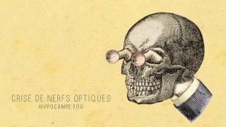 11 - CRISE DE NERFS OPTIQUES (Hippocampe Fou)