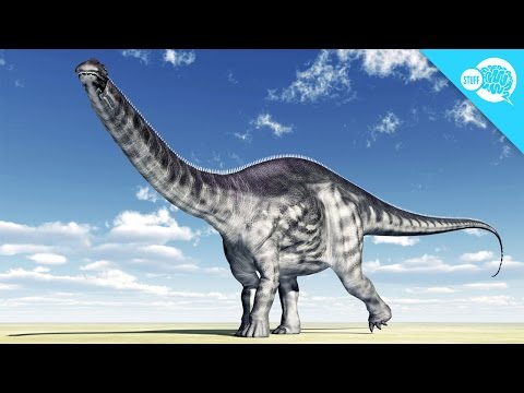 Did The Brontosaurus Exist?