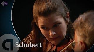 Play Piano Trio In B Flat Major, D. 898 (Op. 99)