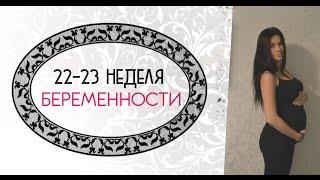 видео 23 неделя беременности