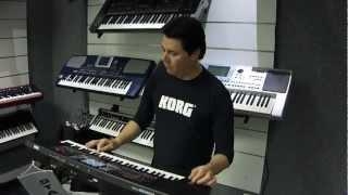 KORG microARRANGER MAR 1 Brasil Styles