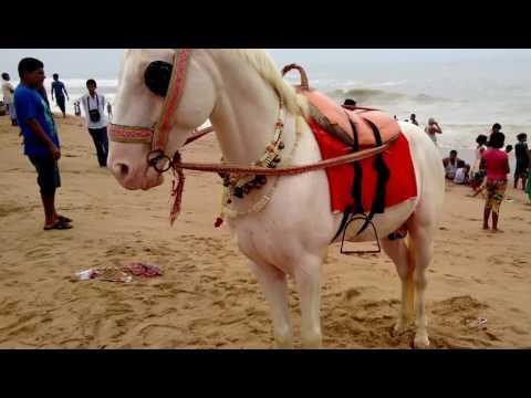 Horse Riding at Puri ,Odisha,India
