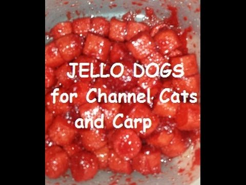 Strawberry jello catfish bait