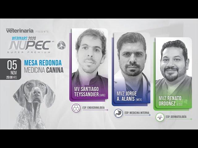 Webinars Nupec 2020 | Mesa Redonda Medicina Canina